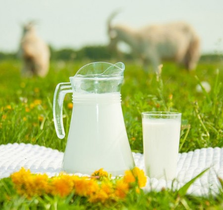 молоко Чебоксары. Фото №3