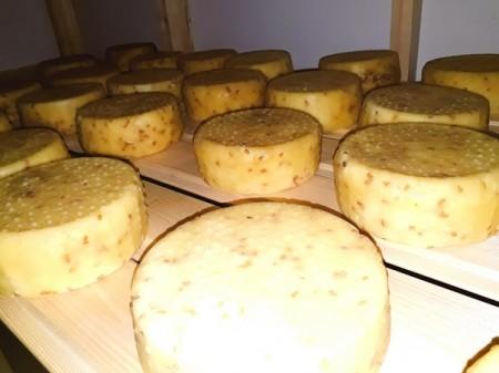 сыр Чебоксары. Фото №3