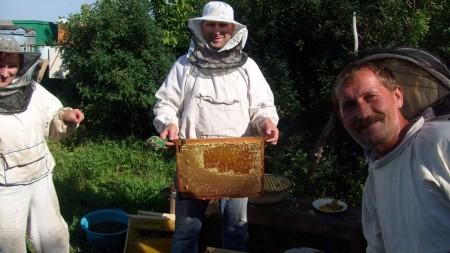 мёд Оренбург. Фото №3