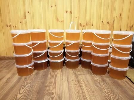 мёд Оренбург. Фото №1