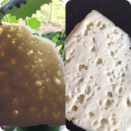 сыр Самара. Фото №2