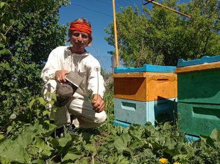 мёд Тольятти. Фото №3