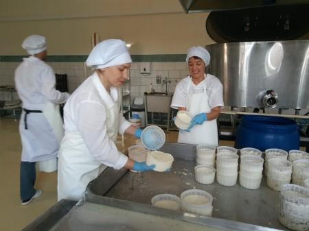 сыр Тольятти. Фото №3