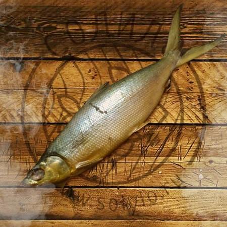рыба Ульяновск. Фото №2