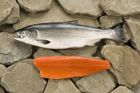 рыба Жигулёвск. Фото №2