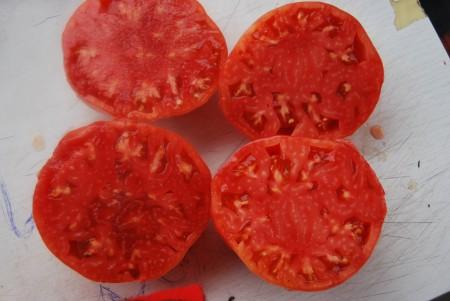 семена Хамкетинская (Краснодарский край). Фото №3