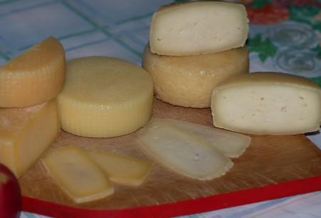сыр Нижний Новгород. Фото №1
