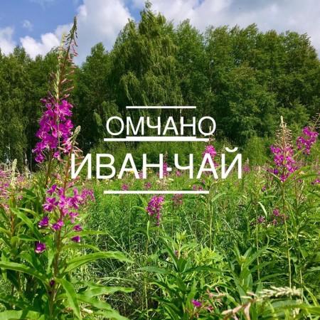 чай Омск. Фото №1