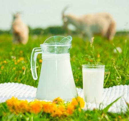 молоко Самара. Фото №2