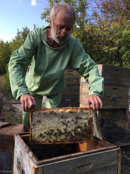 мёд Самара. Фото №1