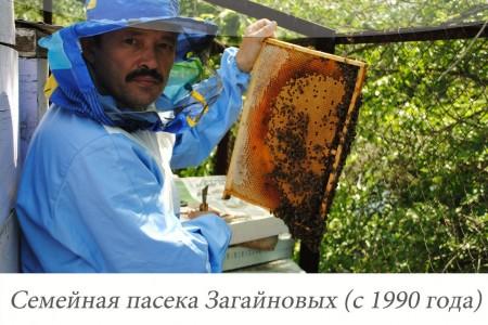 мёд Самара. Фото №2