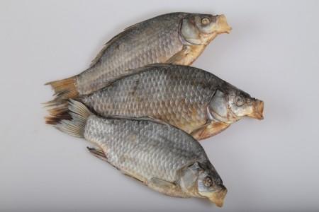рыба Самара. Фото №1